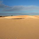 Desert Viana